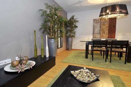 Modern apartment living room decoration Stock Photo - 8989659