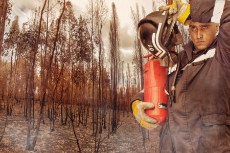 Fireman in a burned forest Stock Photo - 15262537