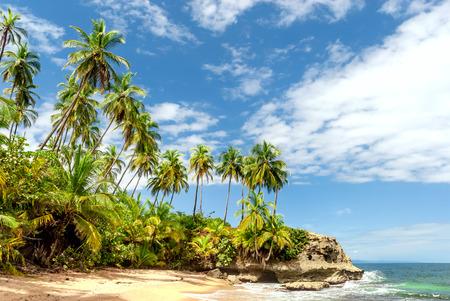 Tropical paradise in Costa Rica, Manzanillo