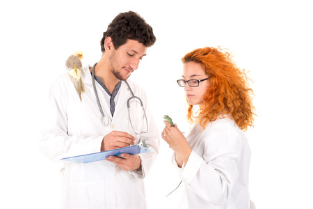 Veterinarian team with several animals isolated in white