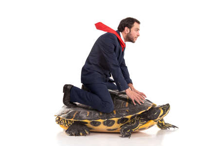 Businessman riding a turtle isolated in a white background