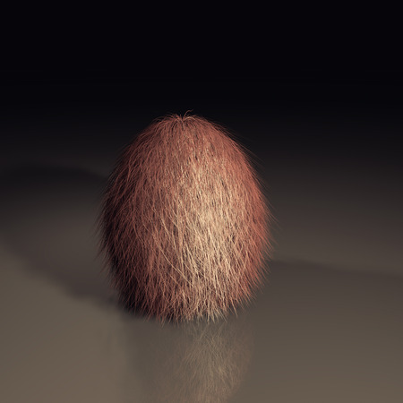 3d furry egg