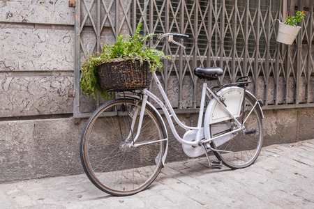 wicker basket: white bicycle with wicker basket with a green plant decoration Stock Photo