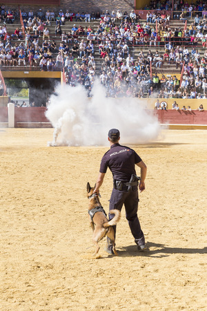 Avila, Spain - September 24, 2016 - Police dog trained in an exhibition of his work Editorial