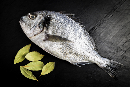 Dorada fresh fish next to bay leaves on a black slate table prepared for cooking Stock Photo
