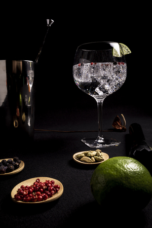 tasty and fresh gin and tonic cocktail on a black background next to your ingredients Stok Fotoğraf