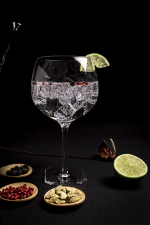 tasty and fresh gin and tonic cocktail on a black background next to your ingredients