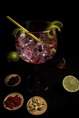 tasty and fresh gin and tonic cocktail on a black background next to your ingredients Фото со стока