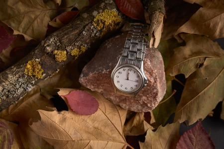 Clock on a trunk and dry leaves in the absence of a minute to start the new year 2019 Stock Photo
