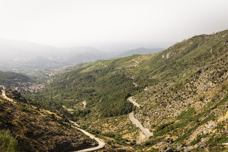 panoramic of beautiful green mountains with paths and stones in summer