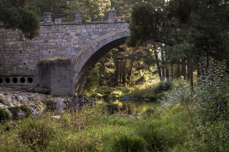 mountain river crossing an old stone bridge surrounded by green pines and plants