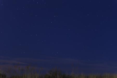 view of blue night sky starry with grass moving through air garter 版權商用圖片