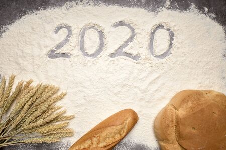 Happy New Year 2020. Symbol from number 2020 and wheat on farina background Stock Photo