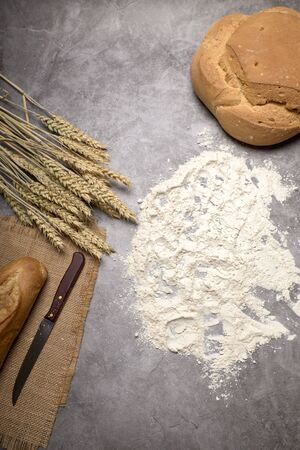 Rustic bread and wheat spikes on a grey background - Healthy food concept