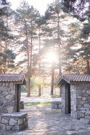 Warm summer sunset in the pine forest next to some stone huts. Nature, pines. Concept of nature 免版税图像
