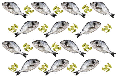 White background with dorado and laurel. Concept of food, commerce and promotion