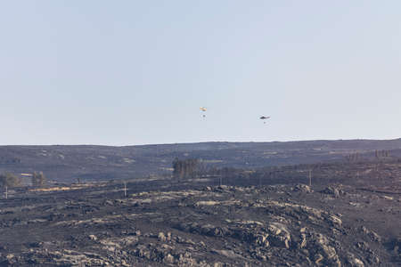 Helicopters over a landscape burned by a forest fire, finishing putting it out. Fire concept