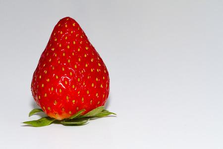 primer plano de fresa sobre fondo blanco