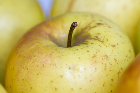 Forground of apples