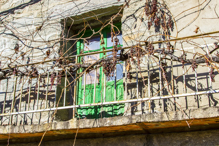overrun: Vines overrun the balcony of an abandoned house