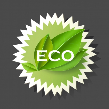 Label with leaf  Eco product vector design Stock Vector - 17353275