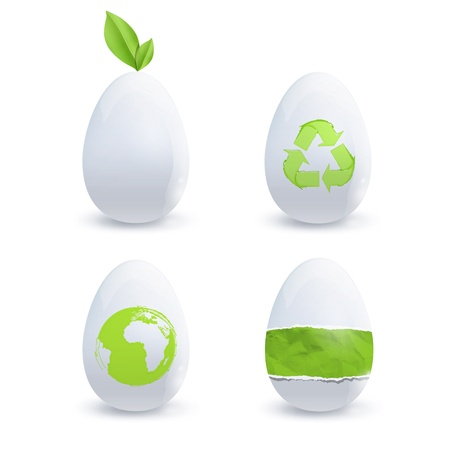 Collection of eco eggs. Vector deisgn. Stock Vector - 18727240
