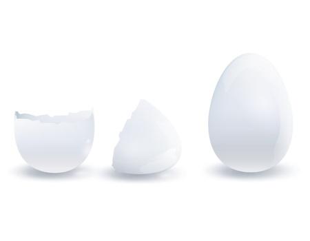 Open and close egg. Vector design. Stock Vector - 18727180