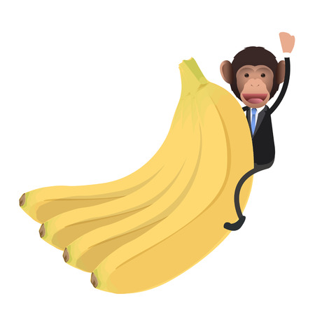 business monkey with banana over white background Vector