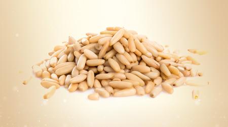 pinion: Pinion nut