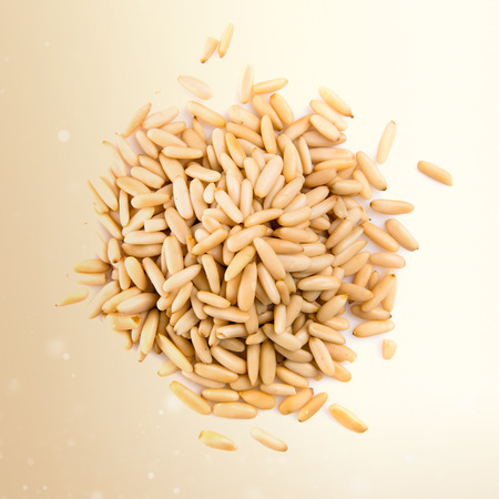pine nuts: Pinion nut