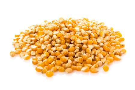 maíz: El ma�z de palomitas de ma�z