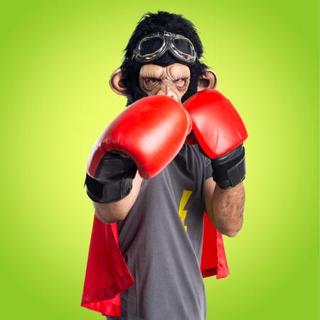 Superhero monkey man with boxing gloves Stock Photo