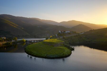 Douro wine valley region s shape bend river in Quinta do Tedo at sunset, in Portugal Banco de Imagens