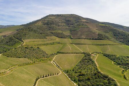 Douro river wine valley region drone aerial view, in Portugal