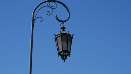 forest management: Lamp