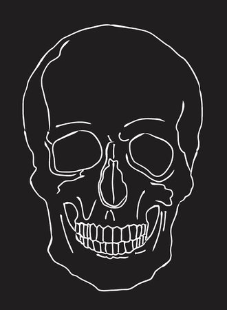 Illustration of a skull with white lines on dark background