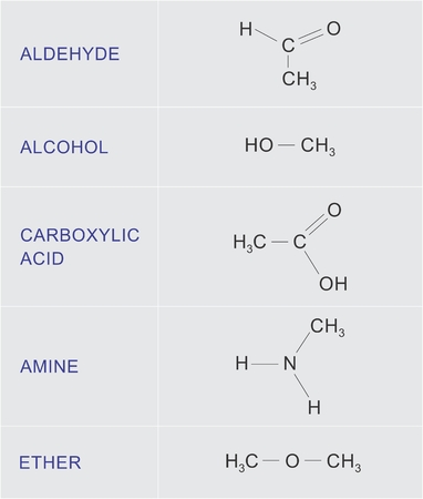 Illustration of a table with examples of organic chemical functions.