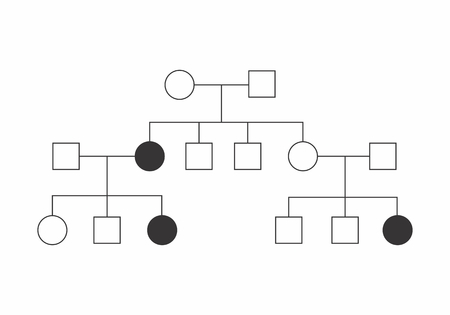 Simple illustration of a heredogram on white background