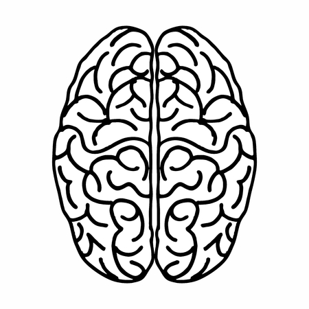 Freehand illustration of an isolated brain seen from above. Black outlines on the white background. Illusztráció
