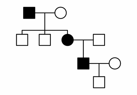 The illustration of a simple family diagram on white background