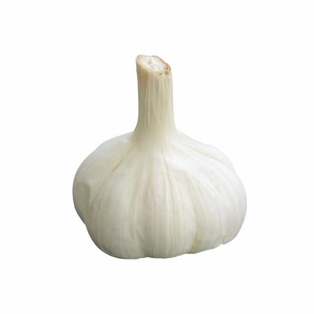 A single garlic isolated on white background