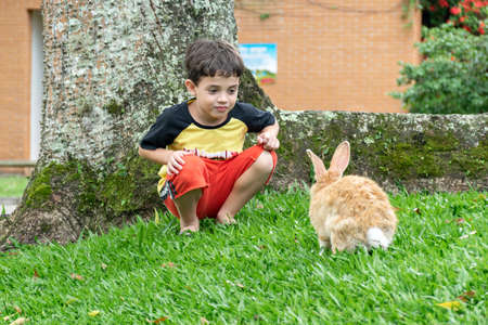 6 year old boy crouched down and looked at a rabbit.