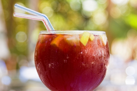 Close view of a cup with spanish refreshing sangria photo