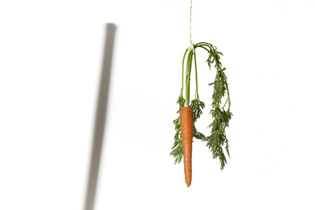 Shadow of a stick and carrot hanging on a string on a white background as a concept of double motivation