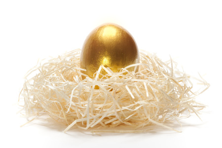 priceless: Golden egg in nest on a white backgound as a concept of unique