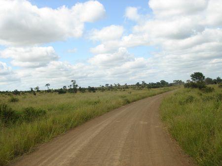 savana: beautiful landscape view of a savana in South Africa Stock Photo