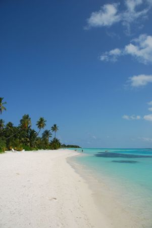 beautiful scene beach in a Maldivian Island photo