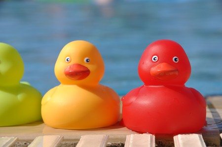 close-up of colorful rubber ducks at the pool side (shallow depth of field) photo