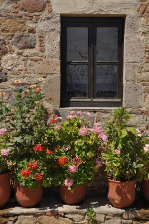 gorgeous greek scene with lovely geranium flowers by the window Stock Photo - 7917114