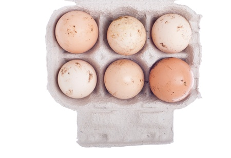 six dirty eggs in a carton box isolated on white background photo